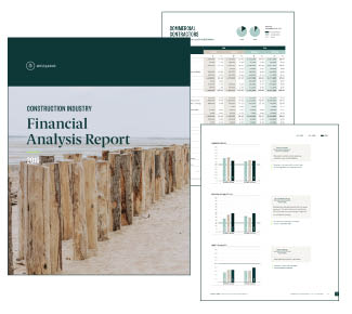 Construction Industry Financial Analysis Report